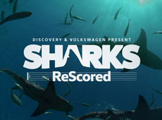 VW + Discovery – Sharks Rescored